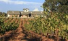Sera Fina Cellars - Multiple Locations: Wine Tasting for Two or Four at Sera Fina Cellars and Cinque  (Up to 46% Off)