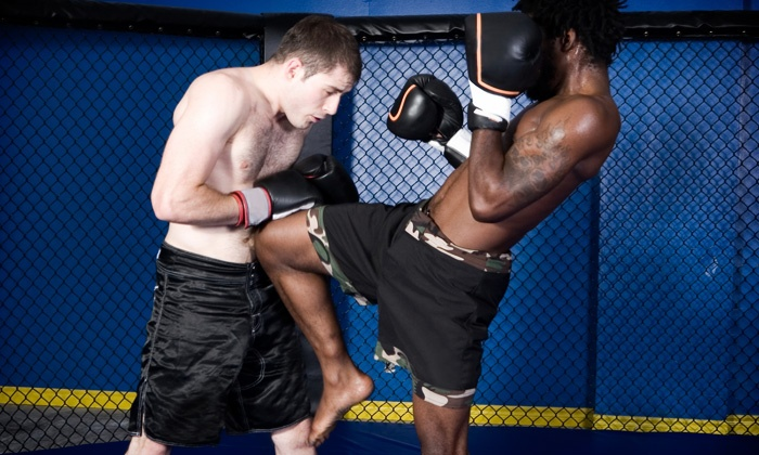 Red Planet Muay Thai - Red Planet Muay Thai: $14 for $40 Worth of Martial-Arts Lessons — Red Planet Muay Thai