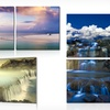 """Nature Photographs on 20""""x20"""" Diptych"""