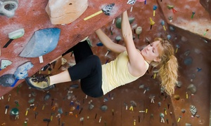 The Climbing Centre - Penrith: $11 for an All-Day Indoor Rock Climbing with Harness Hire at The Climbing Centre, Penrith ($21 Value)