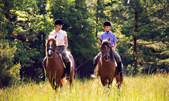 DCW Riding Instruction - Baytown: Two or Four Group Horseback-Riding Lessons or Two Private Lessons at DCW Riding Instruction in Stillwater (51% Off)