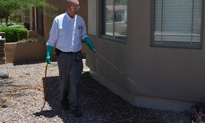 Mastertech Pest Solutions - Phoenix: Pest-Control Treatment and Termite Inspection from MasterTech Pest Solutions (45% Off)