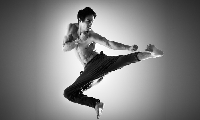 Vizzio's Institute of Martial Arts - Fairfield: One or Two Months of Martial Arts Training at Vizzio's Institute of Martial Arts(Up to 65% Off)