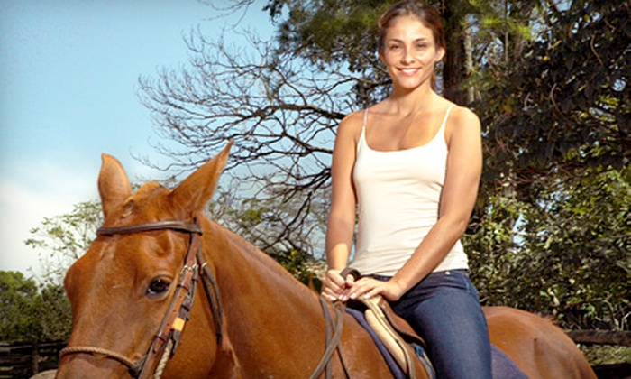 A Ranch 394, Inc. - Bloom: 60-Minute Trail Ride for Two or Four from A Ranch 394, Inc. in Chicago Heights (Up to Half Off)