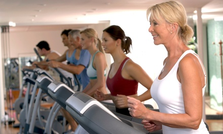TwoMonth Gold or Platinum Gym Membership to Real Club Training (Up to 78% Off)
