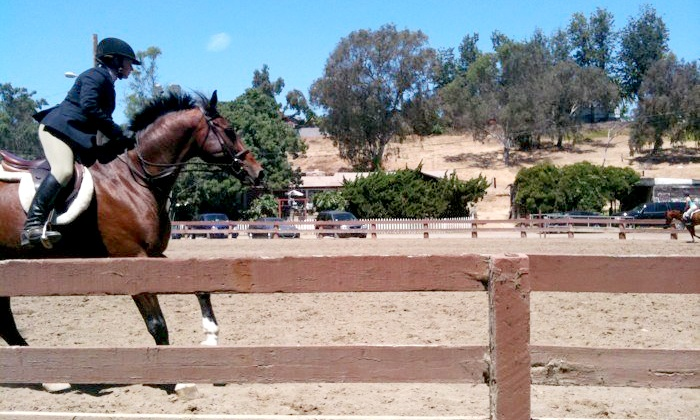 Sweetwater Farms - Bonita: Horses 101 Lesson Package with Optional Extra Lesson at Sweetwater Farms (Up to 54% Off)