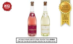 """בנא משקאות: שיכר אמברוסיה מבעבע ב-10 ₪ בלבד! תקף בכל סניפי רשת """"בנא משקאות"""" בפריסה ארצית"""