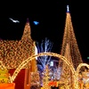 Up to 50% Off Christmas-Light Bus Tour