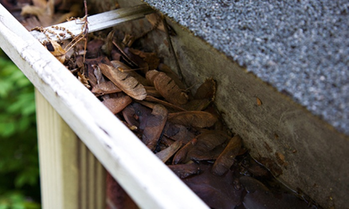 Anderson Brooks Construction - Kalamazoo: 100, 200, or 300 Linear Feet of Gutter Cleaning from Anderson Brooks Construction (Up to 53% Off)