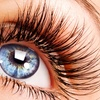 Up to 62% Off Eyelash Tinting or Extensions