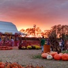 Up to 50% Off Admission at Fun Farm Pumpkin Patch