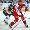 Las Vegas Wranglers – Half Off Hockey Game