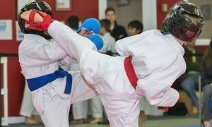 MASSDOJO: One Month of Unlimited Karate Classes for One or Two at MASSDOJO (Up to 72% Off)
