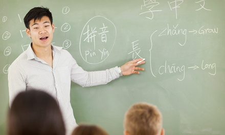$145 for $295 Worth of Language Classes — The Global Language Network