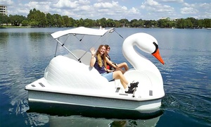 Up to 43% Off Lake Eola Swan Boat Rentals at City of Orlando, Florida, plus 6.0% Cash Back from Ebates.