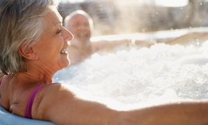 Francisco Spa & Pool Services: $175 for $350 Groupon — Francisco Spa & Pools