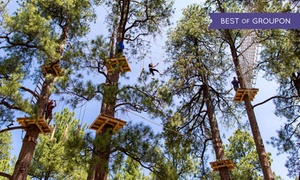 Flagstaff Extreme Adventure Course: Outdoor Obstacle Course for Four at Flagstaff Extreme Adventure Course (Up to 38% Off). Three Options Available.