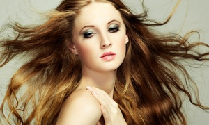 Salon X: Haircut and Conditioning with Options for Partial or Full Highlights at Salon X (Up to 70% Off)