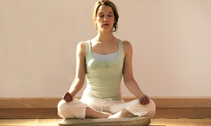 Jayadeva Yoga Schools: 10 or 20 Yoga or Pilates Classes at Jayadeva Yoga Schools (Up to 61% Off)