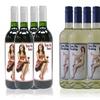 Turn Me Wine Sampler Case (12 Bottles)