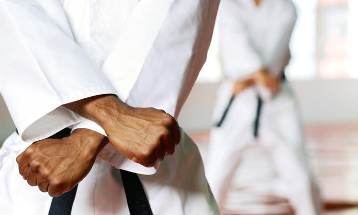 Japan Karate Federation of Hillsboro - Hillsboro: 10 or 20 Karate Classes at Japan Karate Federation of Hillsboro (66% Off)