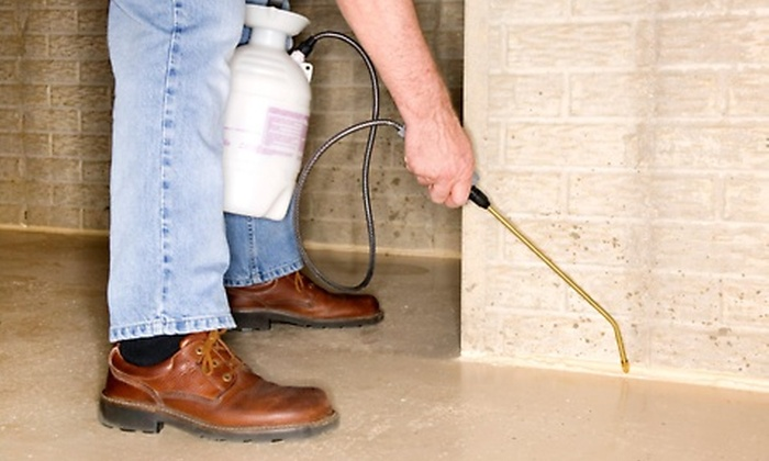 WB Pest Control - Las Vegas: Up to 53% Off home and yard pest control at WB Pest Control