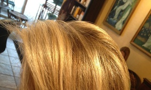 Anthony Liguori at Studio 5 Salon: Up to 62% Off Women's Color  at Anthony Liguori at Studio 5 Salon