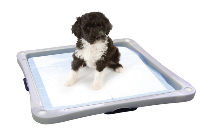 AKC Pet Training Pad Holder Groupon