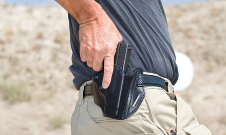 Conceal-Carry-Permit Course for One or Two or Pistol Course for One at PG Firearms Training (Up to 67% Off)