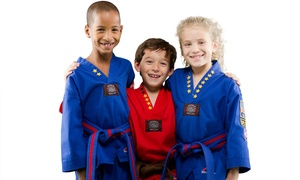 Karate USA Martial Arts Academy: 10 Kids Classes with Uniform for One or Two at Karate USA Martial Arts Academy (Up to 91% Off)