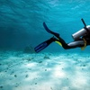 Half Off Class and Dive from Abundant Life Scuba