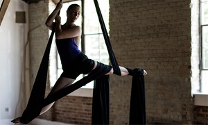 abrasiveMedia: One or Two Aerial Fabric, Aerial Conditioning, or Martial-Arts Classes at abrasiveMedia (Up to 52% Off)