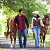 Up to 58% Off Horseback Riding