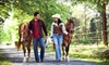 Douglas Lakeview Stables - Mcmillan: One-Hour Trail Ride for Two or Four or a Horse-Riding Birthday Party at Douglas Lakeview Stables (Up to 58% Off)