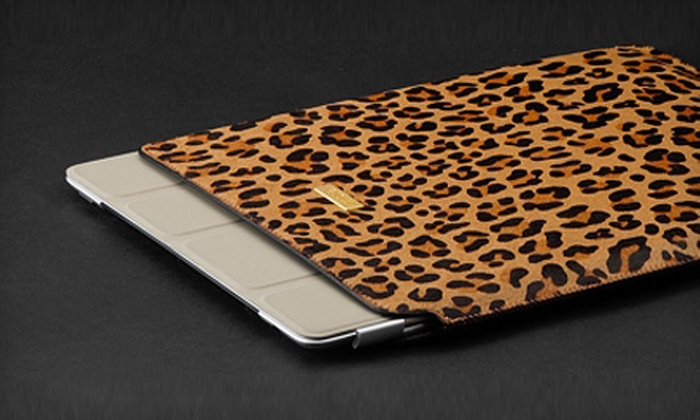 AceKard.ca: $10 for $20 Worth of iPad and iPhone Cases and Accessories from AceKard.ca