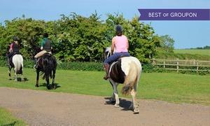 Brimington Equestrian Centre: Own a Pony Day for £24 at Birmington Equestrian Centre (56% Off)