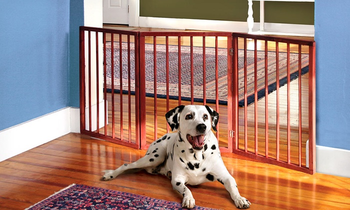 Pet Store Folding Wooden Gate: $19.99 for Pet Store Folding Wooden Gate ($29.99 List Price). Free Shipping and Returns.