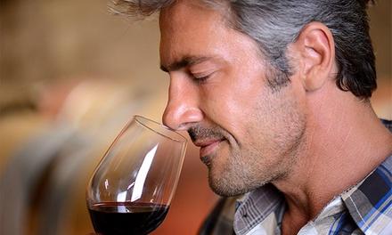 Curso completo de viticultura, enología y cata para una o dos personas desde 15 €