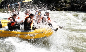 Pangaea River Rafting: Whitewater-Rafting Trip on the Clark Fork River for Six or Four from Pangaea River Rafting (Up to 47% Off)