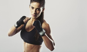 Northwest Martial Arts: 4 or 10 Kickboxing Classes with a Personal-Training Session and Gloves at Northwest Martial Arts (Up to 75% Off)