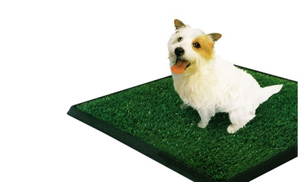 PetZoom Pet Park Deluxe 3-Piece Dog Relief System