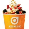 45% Off Frozen Yogurt at Orange Leaf