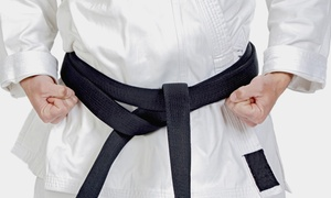 Mile High Karate: Four or Eight Weeks of Unlimited Karate Classes with Uniform at Mile High Karate (Up to 84% Off)