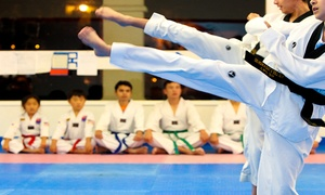 Y.G. Lee Tae Kwon Do Academy: $39 for Four Weeks of Unlimited Tae Kwon Do Classes at Y.G. Lee Tae Kwon Do Academy ($220 Value)