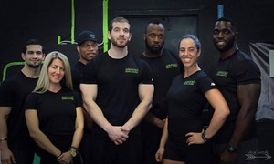 Symmetry Fitness Training System: $19 for $75 Worth of Personal Fitness Program — Symmetry Fitness Training System