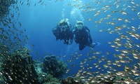 Discover Scuba Diving Session For One (£14.50) or Two (£28) People at London School of Diving (Up to 44% Off)