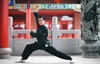 Up to 82% Off Kung Fu Fitness Classes for adults and children