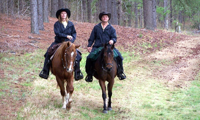 Dead Broke Farm - Raleigh: Horseback Trail Rides at Dead Broke Farm (Up to 55% Off). Four Ride Styles Available.