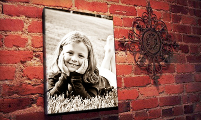 "Pics to Posters: 16""x20"" Canvas Photo Print or 24""x36"" Custom Poster from Pics to Posters (Up to 65% Off)"