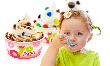 Two or Five Vouchers for Frozen Yogurt and Smoothies at YoFresh Yogurt Cafe (Half Off)